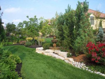 5 Benefits of Evergreens in Your Fall Landscaping Plan