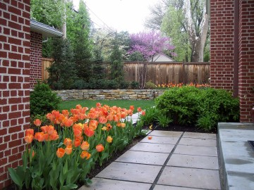 Plan a Garden that Uses Water Efficiently